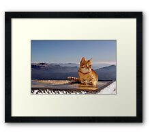 Tomcat Climber on Icy Desk (elevation: 2067 meters above sea level)  Framed Print
