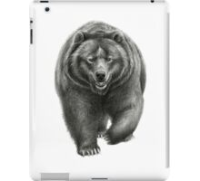 Brown Bear sk068 schukina iPad Case/Skin