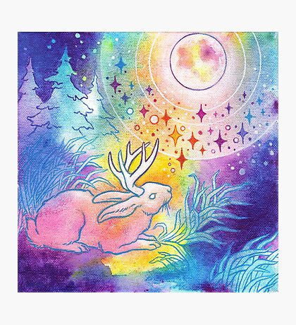 Jackalope of the Night Photographic Print