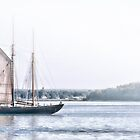 Schooner VIRGINIA by Richard Bean
