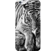 Tiger Tongue iPhone Case/Skin