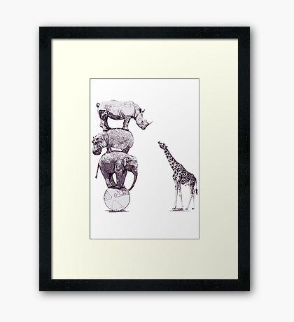 Animals Framed Print