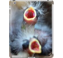 Baby Birds iPad Case/Skin