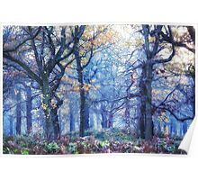 The Enchanted Forest ~ Landscape Poster