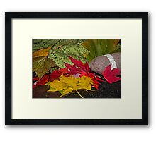 The Art of Wool - Collection 1.8 Framed Print