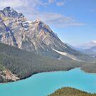 Peyto Lake - Alberta, Canada by Kasia Nowak