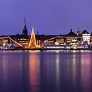 Christmas Tree - Stockholm, Sweden by Kasia Nowak