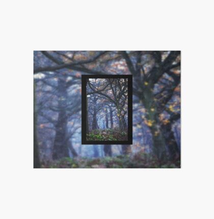 The Enchanted Forest Portrait with Single Border Art Board