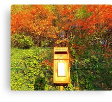 Mail Box And Autumn Leaves Canvas Print