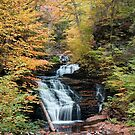 Mohican Falls Curtained With Autumn Splendor by Gene Walls