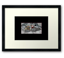 The Art of Wool - Collection 1.12 Framed Print
