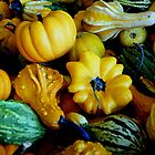 Autumn Harvest by Loree McComb