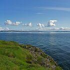 Rathlin Island by Kat Simmons
