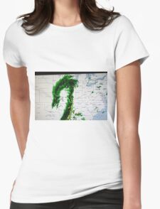 Monster Weather Womens Fitted T-Shirt