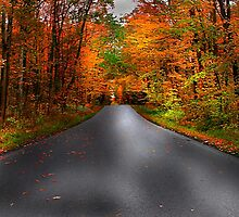 """""""A Long Road Home"""" by canonman99"""