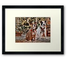 A Bubba and Kensie Christmas - No Text Framed Print