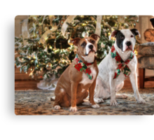 A Bubba and Kensie Christmas - No Text Canvas Print