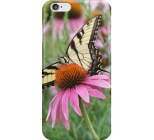 Tiger Swallowtail on Purple Coneflower iPhone Case/Skin