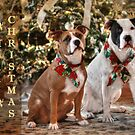 A Bubba and Kensie Christmas by Shelley Neff