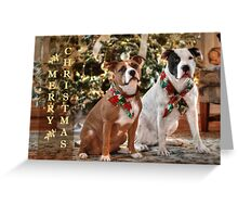 A Bubba and Kensie Christmas Greeting Card