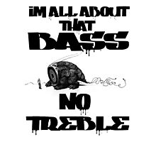 All About That Bass No Treble Photographic Print