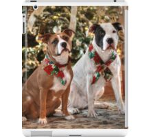 A Bubba and Kensie Christmas - No Text iPad Case/Skin