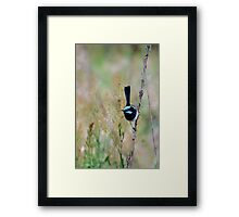 The Blue Fairy.... Framed Print