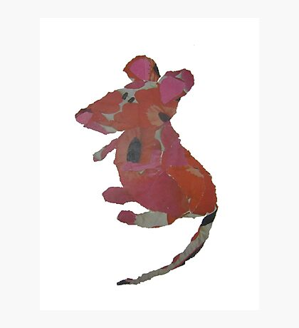 Milly Mouse Photographic Print