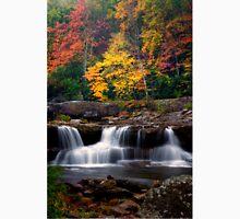 Fall Foliage and Waterfalls Unisex T-Shirt
