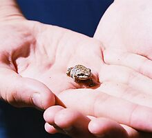 So Small, So Cute by jmethe