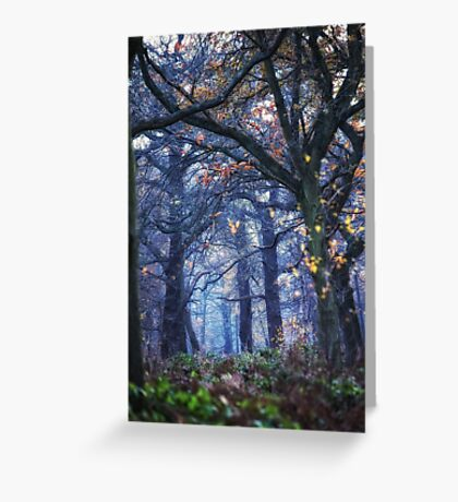 The Enchanted Forest ~ Portrait Greeting Card