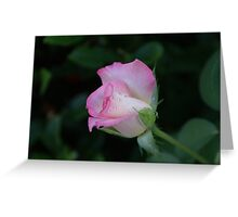Pink is beautiful! La Mirada, CA USA (Read Description) Greeting Card