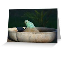 FROG IN A POND Greeting Card