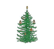 Christmas Fir Tree with Owls Photographic Print