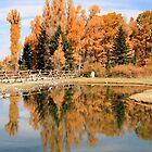 Fall Reflection by Ann  Van Breemen