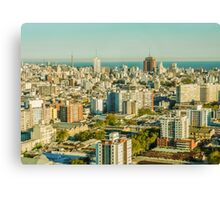 Aerial View of Montevideo Canvas Print