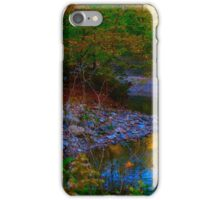 Autumn sojourn iPhone Case/Skin