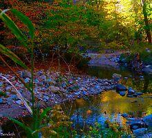 Autumn sojourn by MarianBendeth