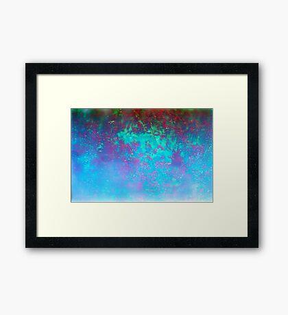 Scarlet of Salvia Framed Print