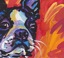 Boston Terrier Bright colorful pop dog art by bentnotbroken11
