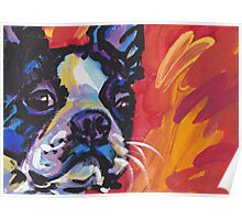 Boston Terrier Bright colorful pop dog art Poster