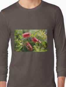 Glistening Brushes Long Sleeve T-Shirt