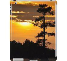 Bayou Sunset iPad Case/Skin