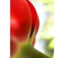 Tiptoe 1 Photographic Print