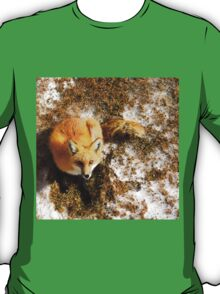 The Majestic Red Fox T-Shirt
