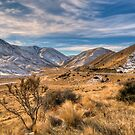 Lindis Pass, Gateway to the Mackenzie Basin by Images Abound | Neil Protheroe