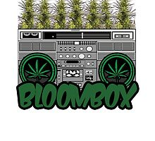 BLOOMBOX by TommyTsunami