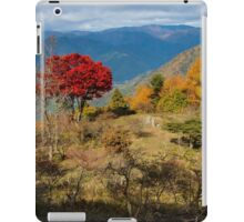 Autumn colours, Hieizan iPad Case/Skin