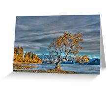 The Lone Tree, Lake Wanaka Greeting Card