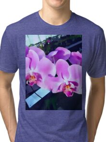 Gorgeous Orchids Tri-blend T-Shirt